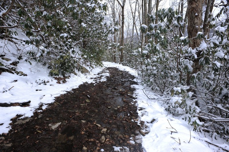 In the winter as the snow melts, water can run along the trail until it finds its way downhill to a stream.  Make sure you have appropriate footwear.