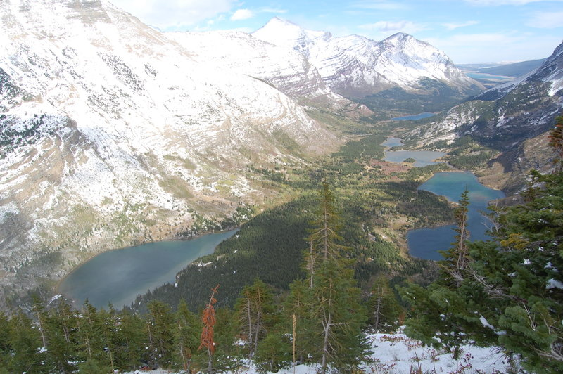 View from Swiftcurrent Pass Trail.