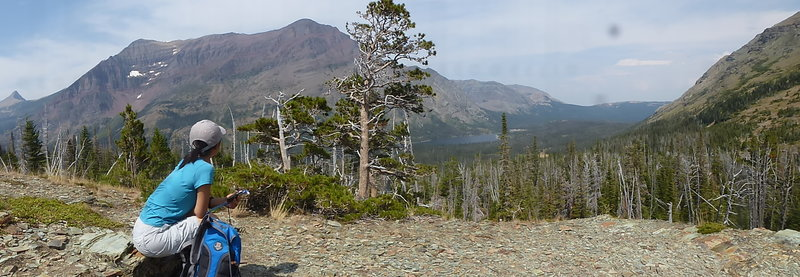 Aster Park Viewpoint - Rising Wolf Mt across the Two Medicine Valley.