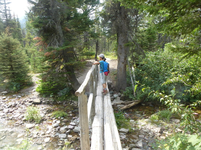 Crossing a stream on the Aster Park / Cobalt Lake Trail.
