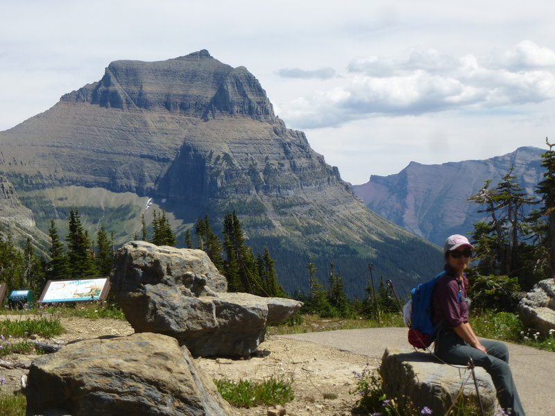 Looking at Going-To-The-Sun Mt from Logan Pass Visitor Center trails.