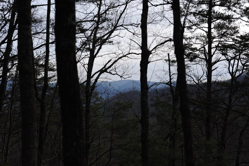 Limited view from Schoolhouse Gap as you reach the end of Scott Mountain Trail.