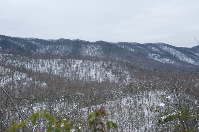 A view of the ridgeline from the trail.