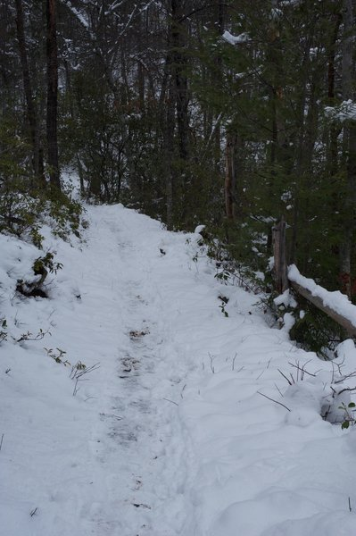 The trail working it's way through the snow down to Little Brier Gap.