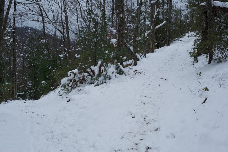 The Little Brier Gap Trail breaks off and heads downhill back to the Walker Sisters Cabin.