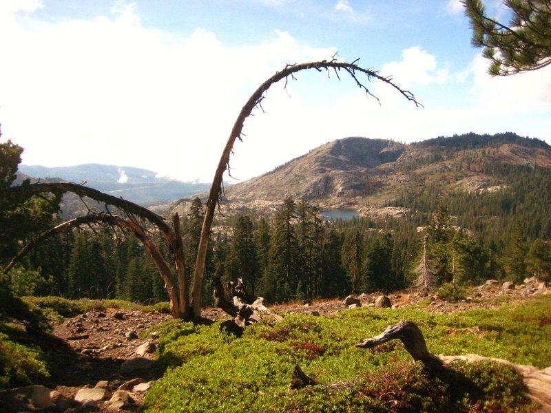 The rain finally cleared! On our way back from Five Lakes Basin. Sanford Lake/Grouse RDG/Tahoe N.F.
