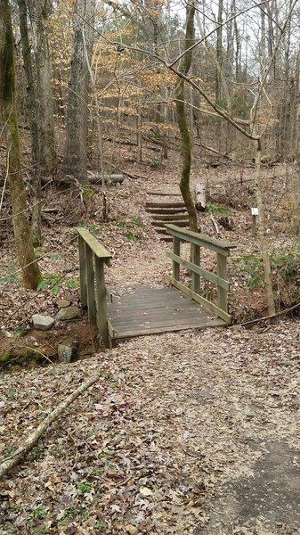 A small bridge on the Persimmon Trail.