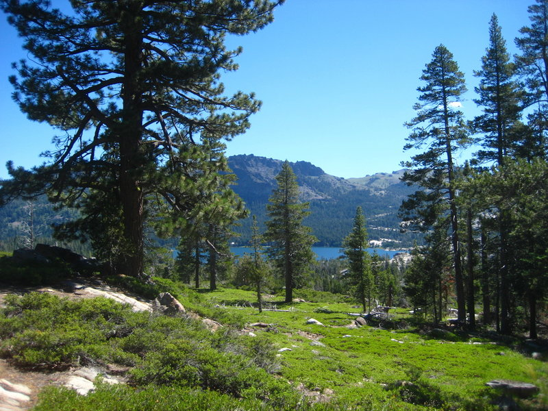 Just a few steps from the Shealor Lakes trailhead and parking area. Climbing higher, away up a ridge from Silver Lake.