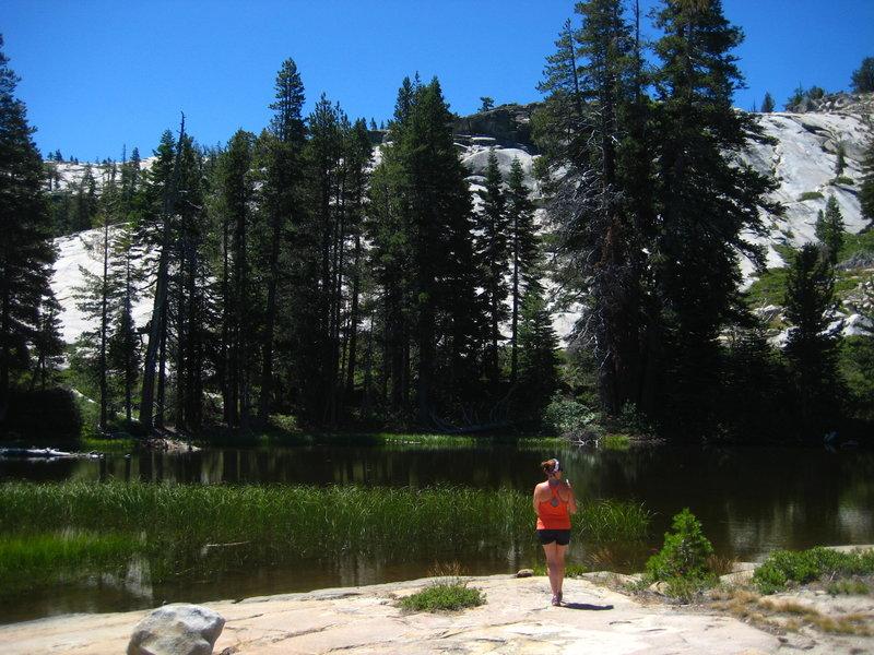 A beautiful though murky lake near the Shealor Lake Trail.