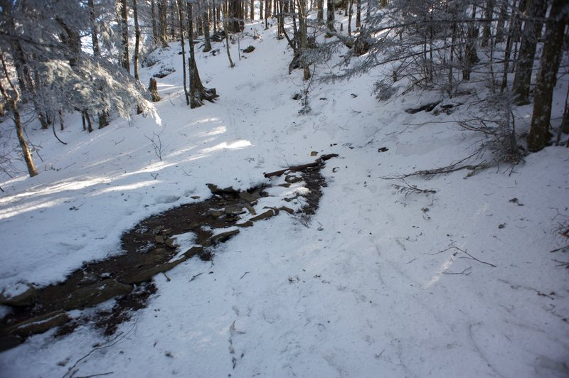 A pipe for spring water crosses the Appalachian Trail just below the Icewater Spring shelter.