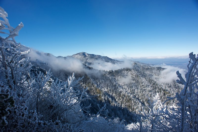 Mount LeConte after a winter storm on the AT. Clouds hug the ridges and hoarfrost covers the trees.