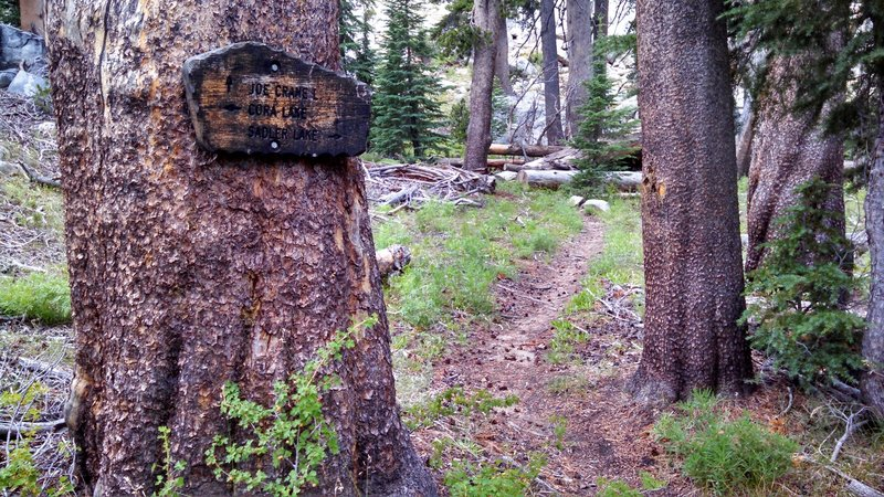 Junction of Joe Crane Lake Trail and Isberg Trail. Can be easy to miss as you head along the Isberg Trail so keep an eye out for it!