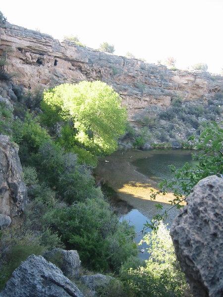 Montezuma's Well is an oasis in the desert.