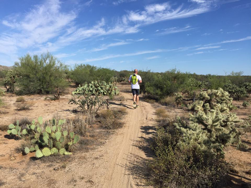 Smooth sailing through cactus on this low lying section of the path.