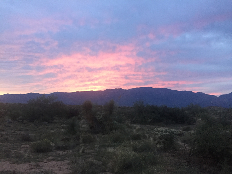 A gorgeous sunrise coming up over the Catalina Mountains.