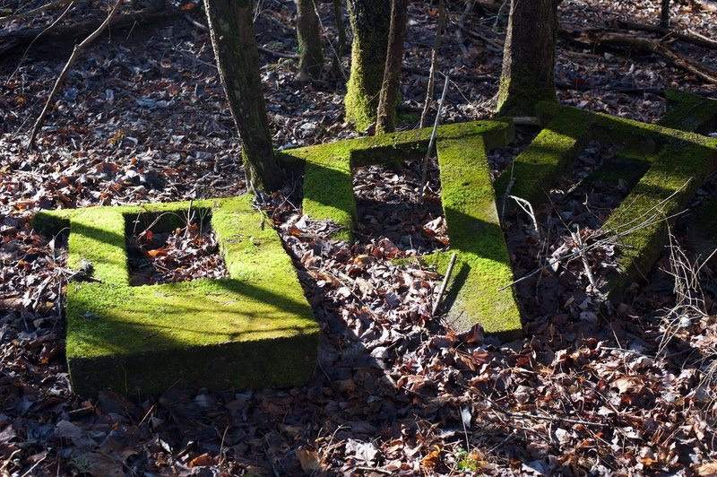 Moss covered cement blocks.