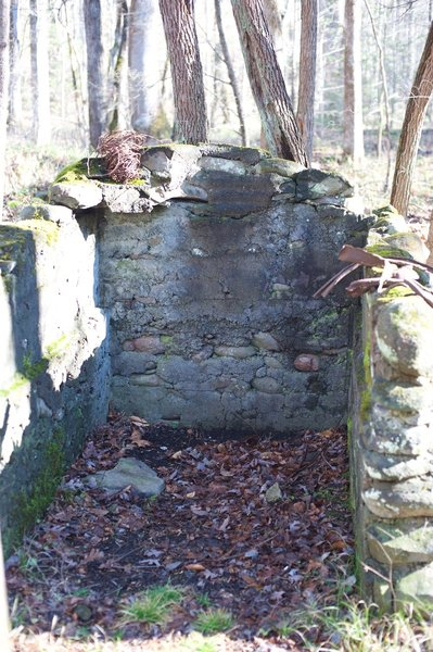 Remains at an old homesite in the Sugarlands Community.