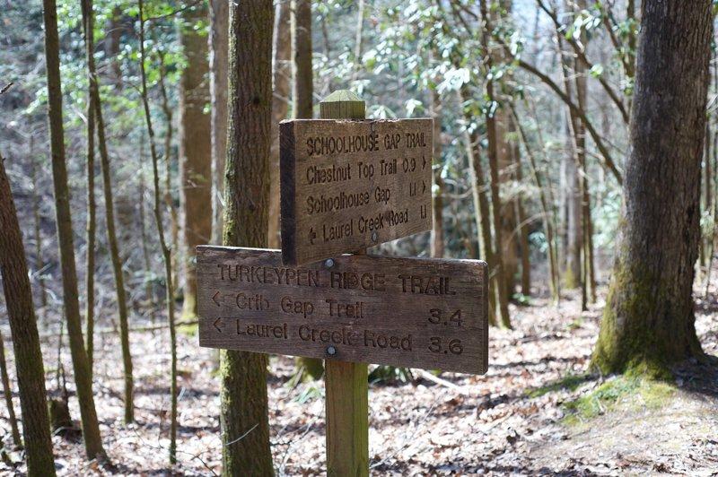 Turkeypen Ridge meets Schoolhouse Gap Trail at Dorsey Gap.