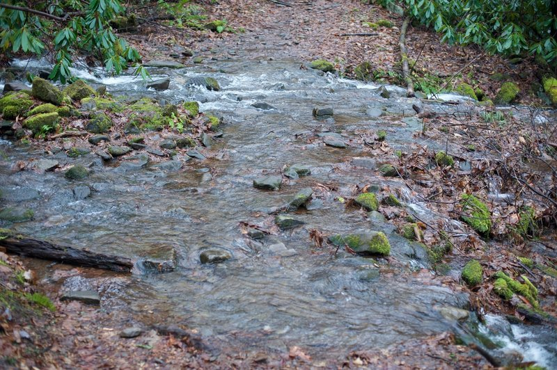 Water crossing the trail. Rock hops are required to get across a couple of branches that cross the trail.