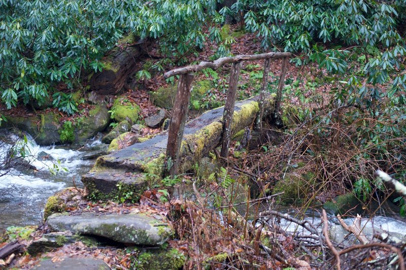 These log crossings can be slippery and mossy. Here, the footlog crosses the Left Prong.
