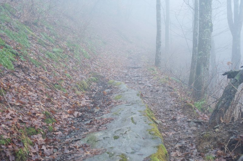 The trail is rocky and uneven as it climbs towards Russell Field Shelter.