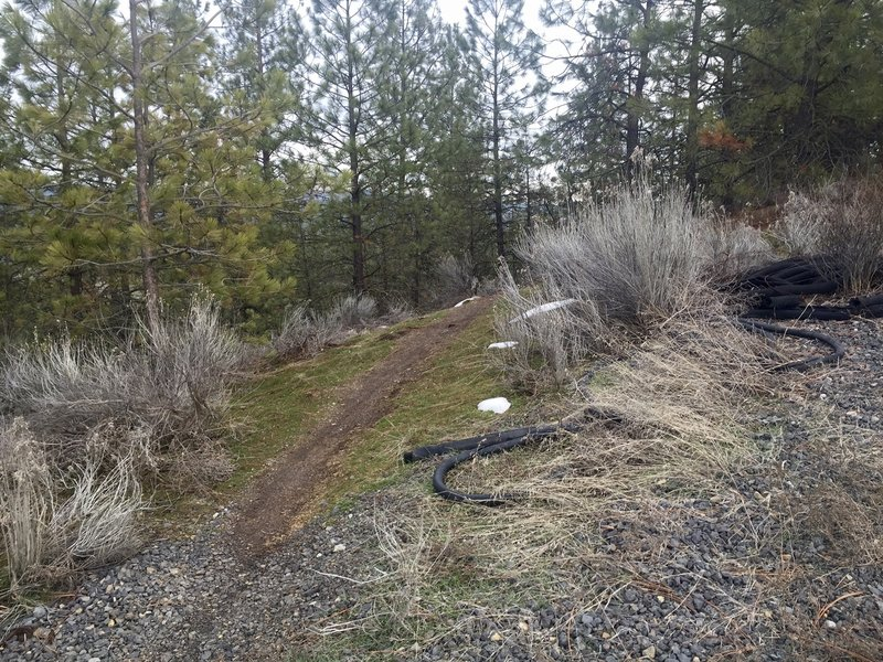 The trail across Seven Mile/Deep Creek side.