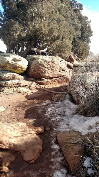 Looking up the trail in January. Mud, snow, and cool rock outcroppings.