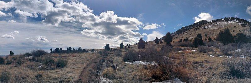 Top of the Mesa. Blue skies, scrub and a good trail.