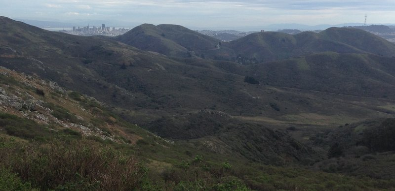View south from the Miwok Trail.