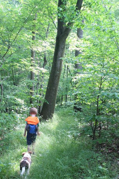 Eli and Joxer hiking along a portion of the Gerard Trail at Oil Creek State Park.