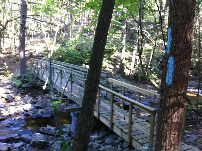 Bridge over Meadow Branch Creek.
