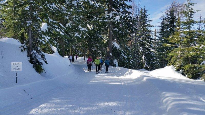 Nordic trail.