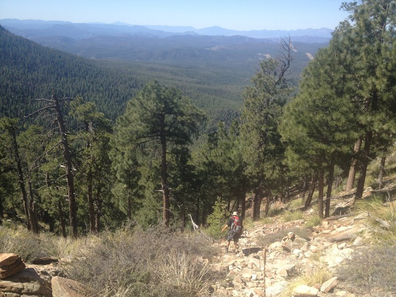View of trail going down from Mogollon Rim.