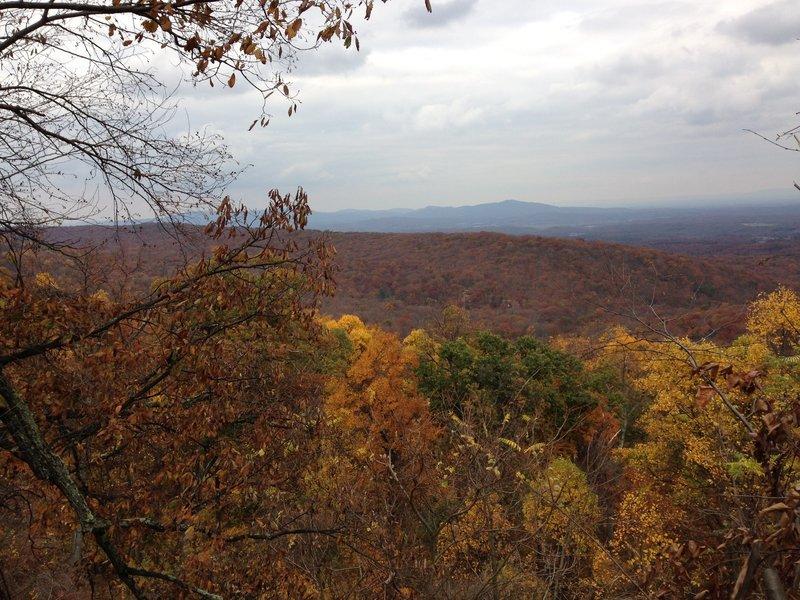 Scenic view above Audubon Road.