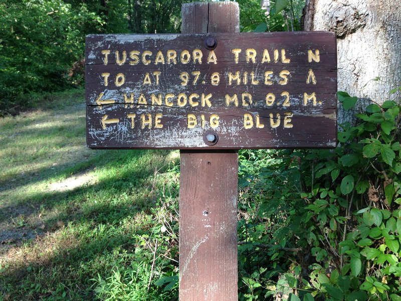 Tuscarora Trail sign just east of mile marker 117. This two-lane is where Tuscarora Trail splits from the Towpath and heads north on Mile Marker Road and under I-70 and onto Route 40 before turning right onto Pectonville Road.