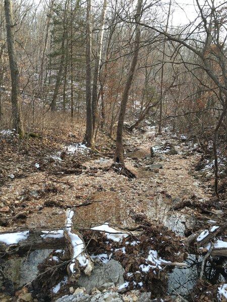 Melting snow along Turkey Pen Hollow Trail.