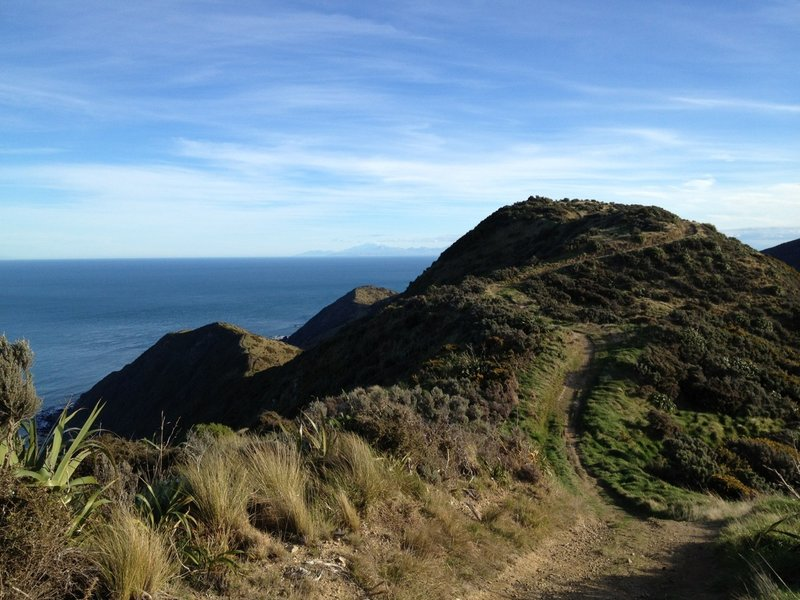 Overlooking the path in front of me with the ocean and the South Island in the background.