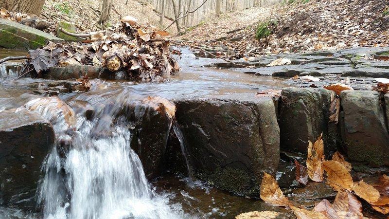 Neal Thorpe Trail - Gorge in January