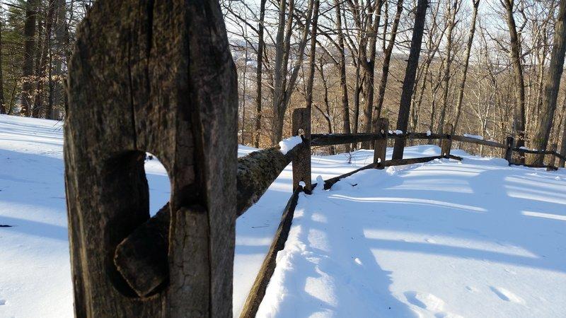 Snowshoeing the Audubon Loop Trail
