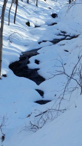 Small stream along the Neal Thorpe Trail, January 2016