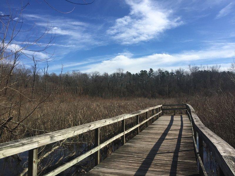 Wildlife observation boardwalk at Gibson Park