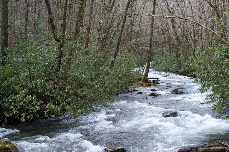The Bradley Fork.
