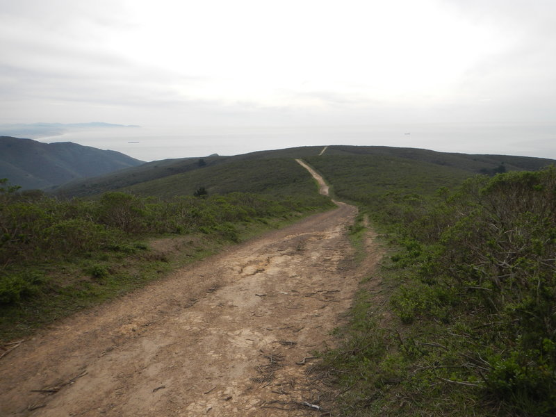 The highest point on the Coyote Ridge Trail looking west.  Follow the trail down to connect with the Coastal Trail, then head south to the Tennessee Valley or north toward Muir Beach.  Travel east to the start of the trail where it intersects with the Miwok Trail.