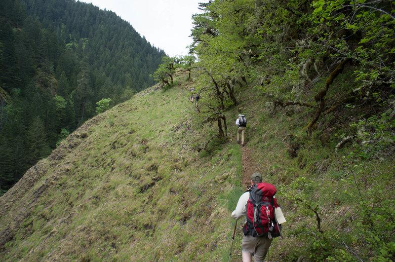 Steep, narrow trail along the hillside.
