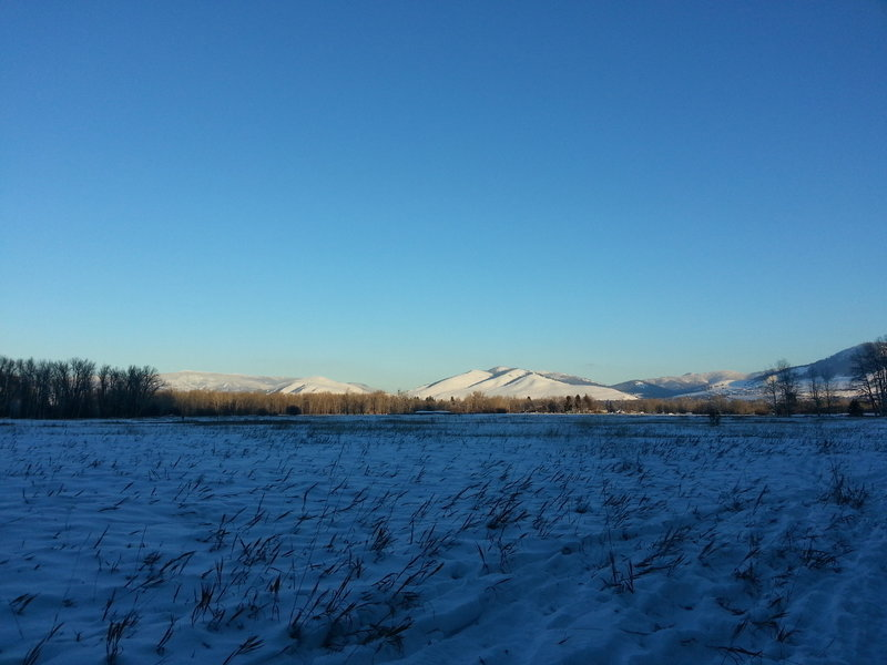 Missoula in view from Maclay Flats.