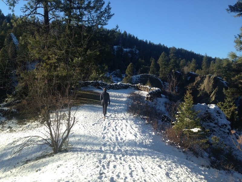 Hiking to the Deep Creek overlook on a sunny winter day!