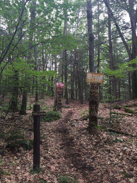 Red Loop Trailhead.