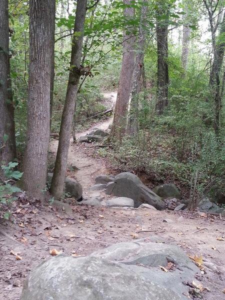 Rocks on East Main.