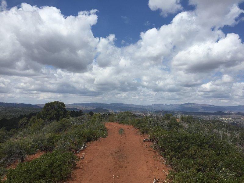 Zion Red Loop - wide open trail.
