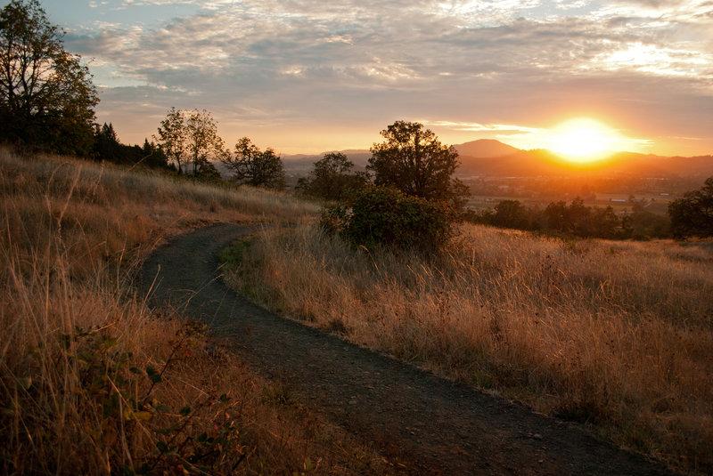 Rick Hammond's photo of the Springbox Savanna at sunset.